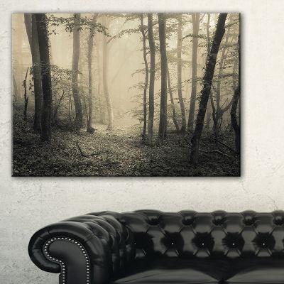Designart Vintage Style Spring Forest Landscape Photography Canvas Print - 3 Panels