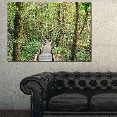 Designart Walk Way In Deep Forest Landscape PhotoCanvas Art Print - 3 Panels