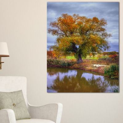 Designart Willow Near Pond Landscape Photography Canvas Art Print