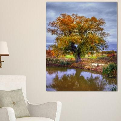 Designart Willow Near Pond Landscape PhotographyCanvas Art Print - 3 Panels