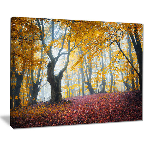Designart Yellow Forest Autumn Trail Landscape Photography Canvas Print