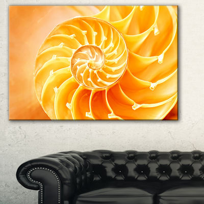 Designart Yellow Nautilus Shell Abstract Canvas Art Print - 3 Panels