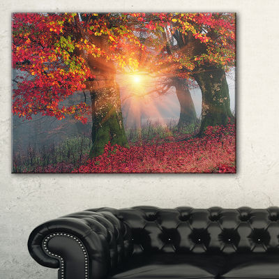 Designart Yellow Sun In Red Autumn Forest Landscape Photography Canvas Print - 3 Panels