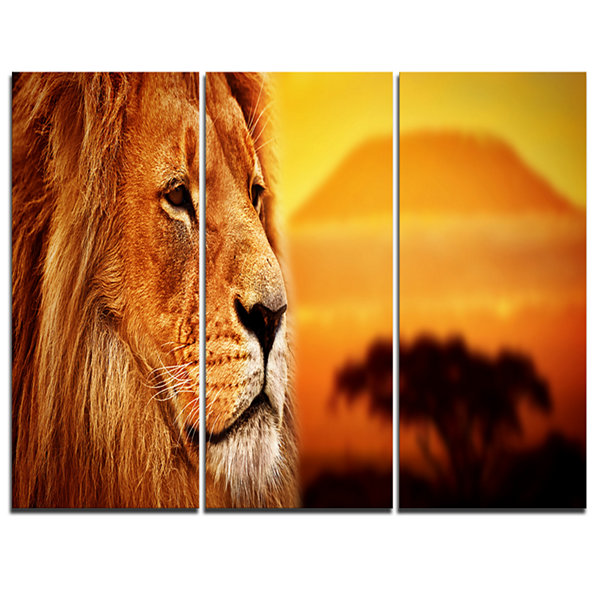 Designart Lion Portrait On Savanna Animal Photography Canvas Art Print - 3 Panels
