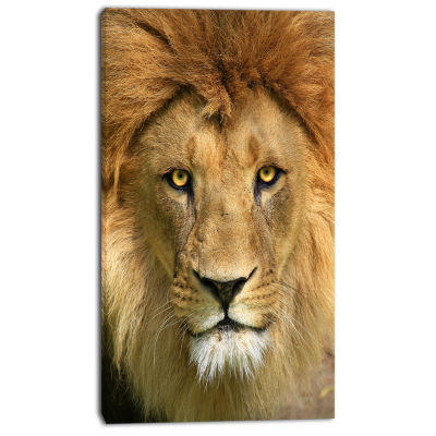 Designart Lion With Calm Face Animal Art Canvas Print