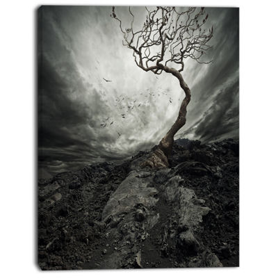 Designart Lonely Tree Under Dramatic Sky LandscapeArt Print Canvas