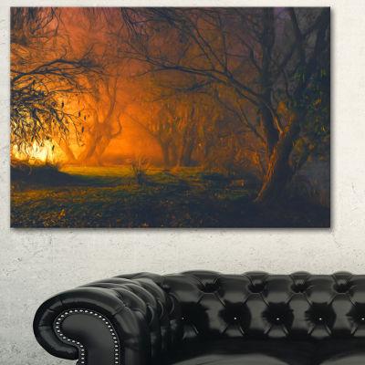 Designart Magical Light In Forest Landscape Art Print Canvas - 3 Panels