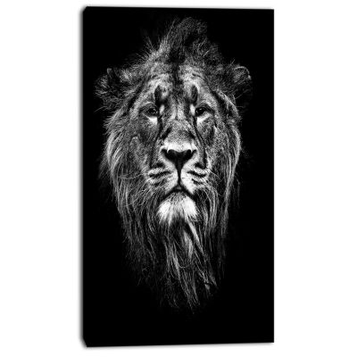Designart Male Asiatic Lion Animal Canvas Art Print