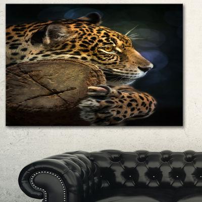 Designart Relaxing Jaguar Animal Photography Art-3Panels