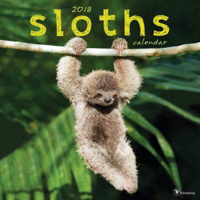2018 Sloths Wall Calendar