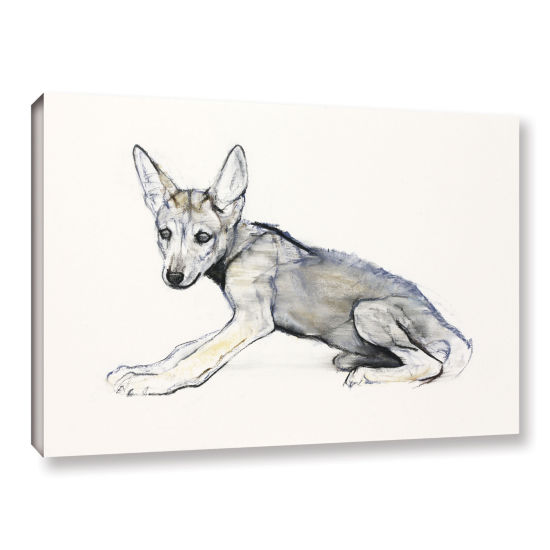 Brushstone Adolescent Arabian Wolf Pup Gallery Wrapped Canvas Wall Art