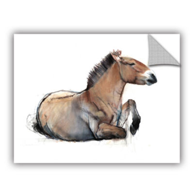 Brushstone Seated Przewalski Removable Wall Decal