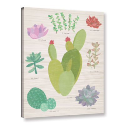 Brushstone Succulent Chart III On Wood Gallery Wrapped Canvas Wall Art