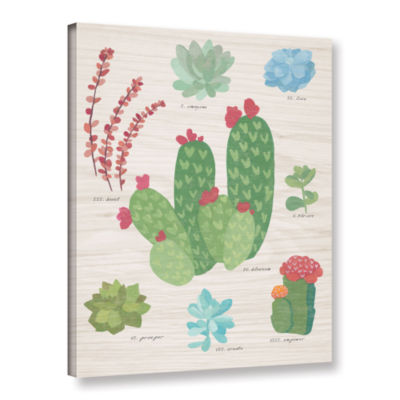 Brushstone Succulent Chart IV On Wood Gallery Wrapped Canvas Wall Art