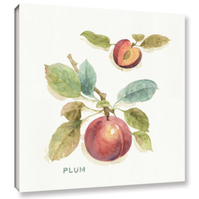 Brushstone Orchard Bloom IV Gallery Wrapped CanvasWall Art