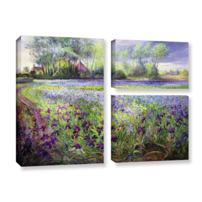 Brushstone Trackway Past The Iris Field 3-pc. FlagGallery Wrapped Canvas Wall Art