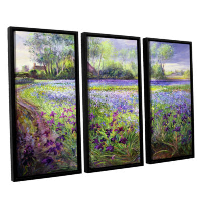 Brushstone Trackway Past The Iris Field 3-pc. Floater Framed Canvas Wall Art