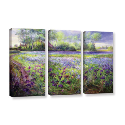Brushstone Trackway Past The Iris Field 3-pc. Gallery Wrapped Canvas Wall Art