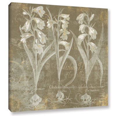 Brushstone Flower Lines I Gallery Wrapped Canvas Wall Art