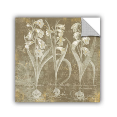 Brushstone Flower Lines I Removable Wall Decal
