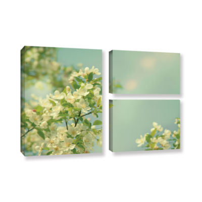 Brushstone Spring Beauty I 3-pc. Flag Gallery Wrapped Canvas Wall Art
