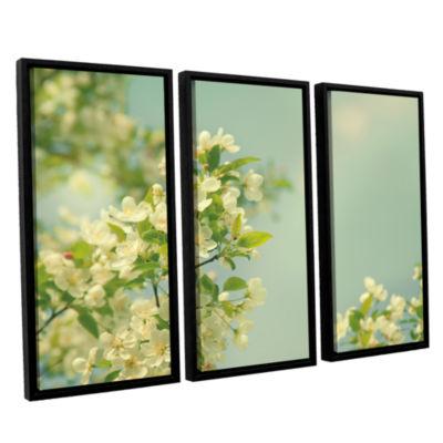 Brushstone Spring Beauty I 3-pc. Floater Framed Canvas Wall Art