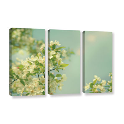 Brushstone Spring Beauty I 3-pc. Gallery Wrapped Canvas Wall Art