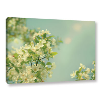 Brushstone Spring Beauty I Gallery Wrapped CanvasWall Art