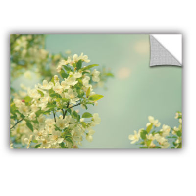 Brushstone Spring Beauty I Removable Wall Decal