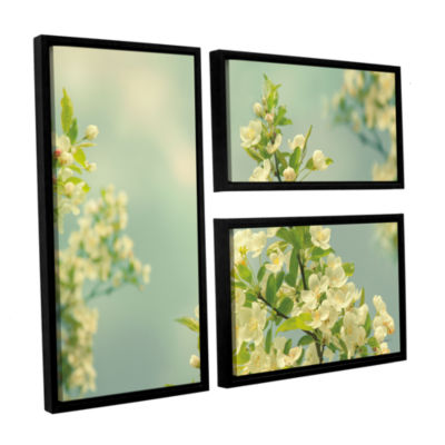 Brushstone Spring Beauty II 3-pc. Flag Floater Framed Canvas Wall Art