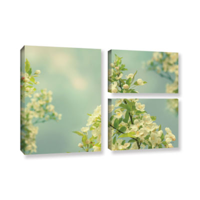 Brushstone Spring Beauty II 3-pc. Flag Gallery Wrapped Canvas Wall Art