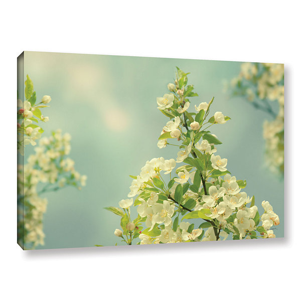 Brushstone Spring Beauty II Gallery Wrapped CanvasWall Art
