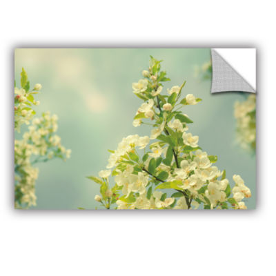 Brushstone Spring Beauty II Removable Wall Decal