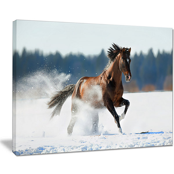 Designart Horse Running In Winter Landscape Photography Canvas Print