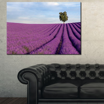 Designart Lavender Field With Solitary Tree Landscape Photography Canvas Print