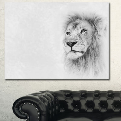 Designart Lion Face On Card Banner Animal CanvasArt Print