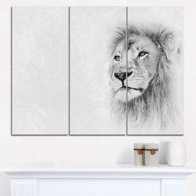 Designart Lion Face On Card Banner Animal CanvasArt Print - 3 Panels