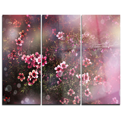 Designart Sakura Japanese Cherry Photography Floral Canvas Print - 3 Panels