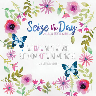 2018 Seize the Day Daily Desktop Calendar