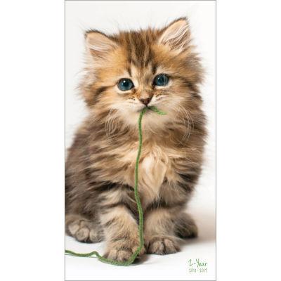 2018-2019 Kittens 2-Year Pocket Planner