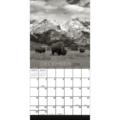 2018 America's National Parks Mini Calendar