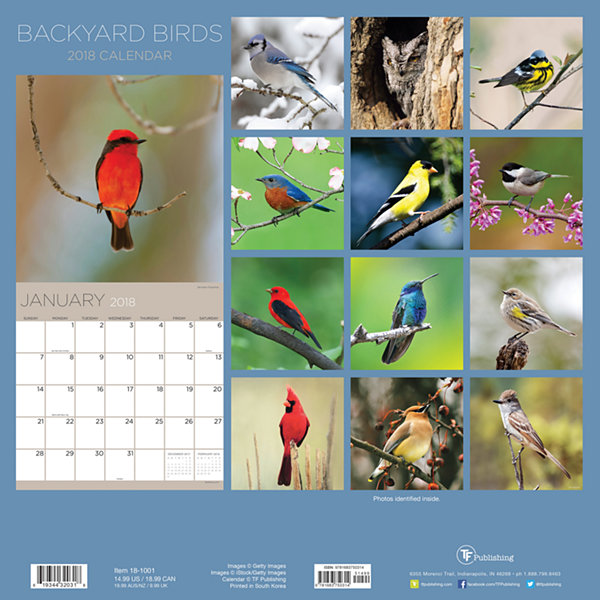 2018 Backyard Birds Wall Calendar