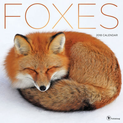 2018 Foxes Wall Calendar