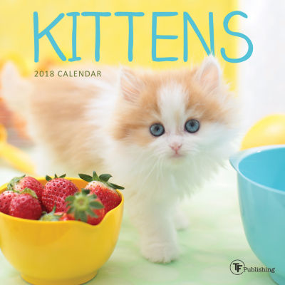 2018 Kittens Mini Calendar