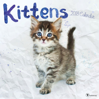 2018 Kittens Wall Calendar