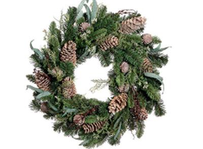 "24"" Eucalyptus Cedar Pine Artificial Christmas Wreath - Unlit"""