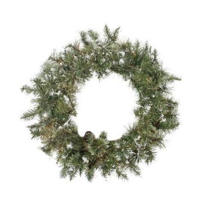 "24"" Snow Mountain Pine Artificial Christmas Wreath- Unlit"
