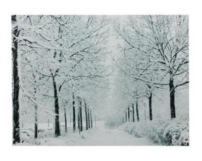"Fiber Optic Lighted Snowfall Winter Lane Christmas Canvas Wall Art 11.75"" x 15.75"""