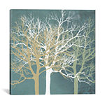 Tranquil Trees by Erin Clark Canvas Print