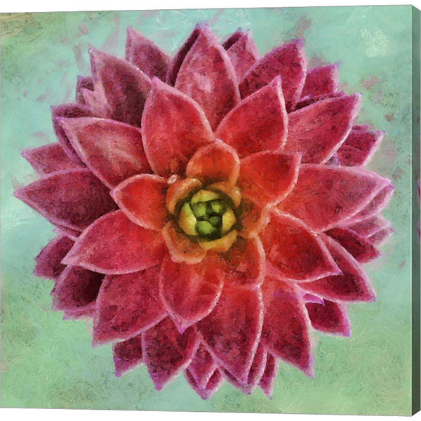Metaverse Art Succulent II Gallery Wrap Canvas Wall Art